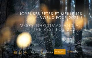 Joyeuses fêtes et meilleurs voeux pour 2021 !